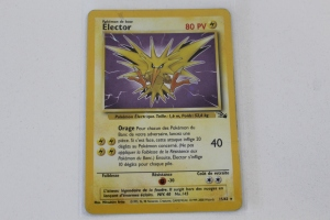 Electhor Edition 1 Fossile Carte Pokemon Rare Holo