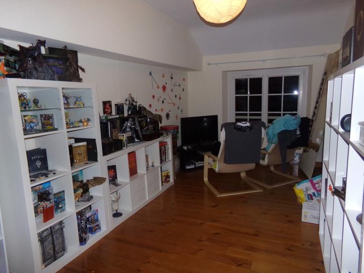 skyrim, collectionneur, collectionneuse rétro, retro gaming, jeux rétro, game room